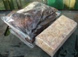 COM 33 9 Ltr German peat + 250g New Zealand Sphagnum